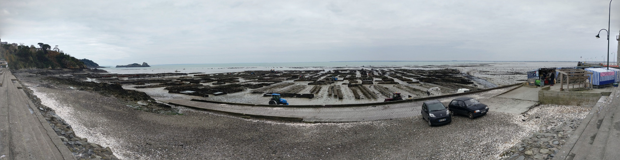 Panoramic with lots of oysters beds and the popular Oyster Market